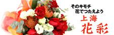 上海 花彩リンクイメージ